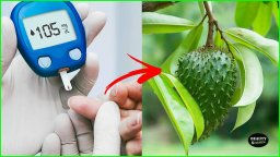 Diabetes Training - Purely Natural Therapies For Diabetes Type 2