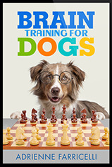 What You Can Expect To Learn From Brain Training For Dogs?